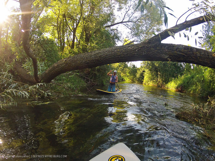 Stand-up-Paddling in Freiburg (22)