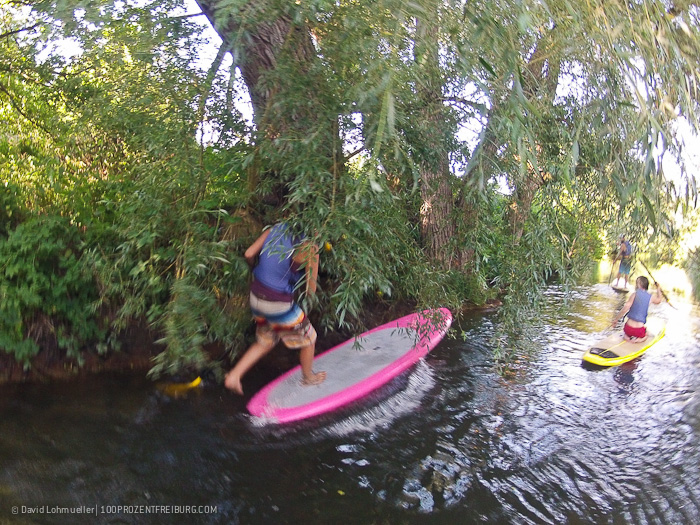 Stand-up-Paddling in Freiburg (32)