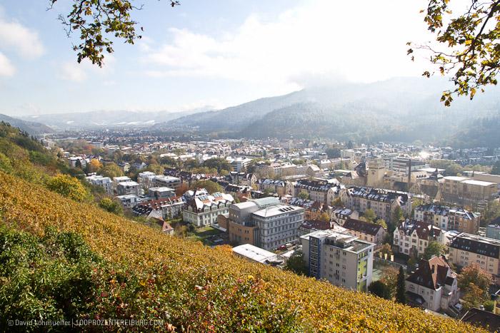 Herbstwanderung Freiburg (26)