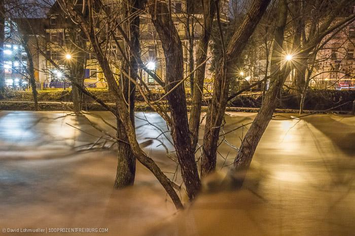 Freiburg Hochwasser (1)