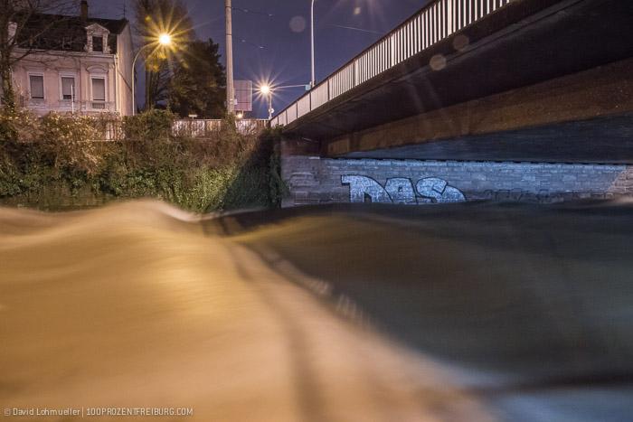 Freiburg Hochwasser (11)