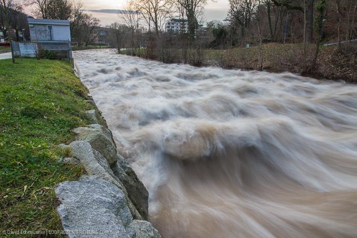 Freiburg Hochwasser (13)