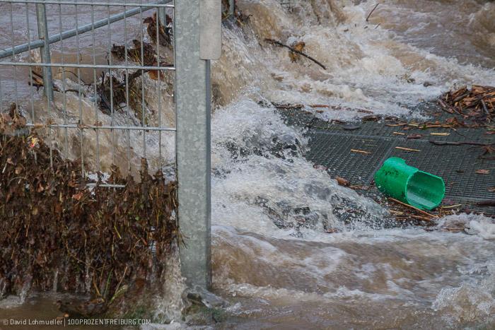Freiburg Hochwasser (14)