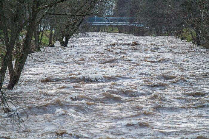 Freiburg Hochwasser (16)