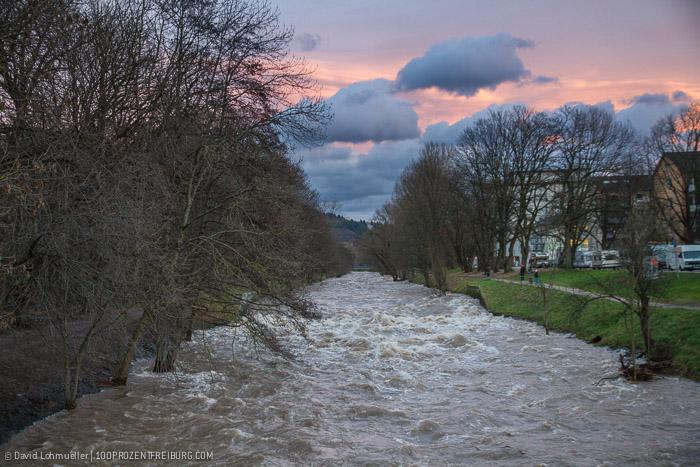 Freiburg Hochwasser (17)