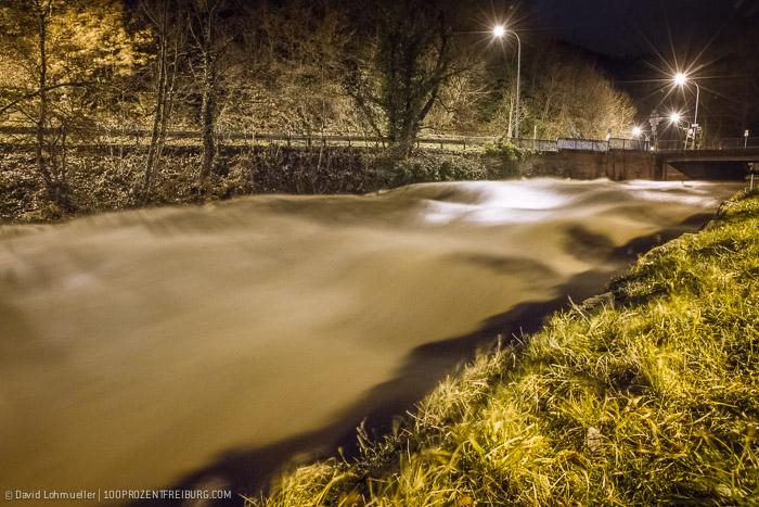 Freiburg Hochwasser (2)