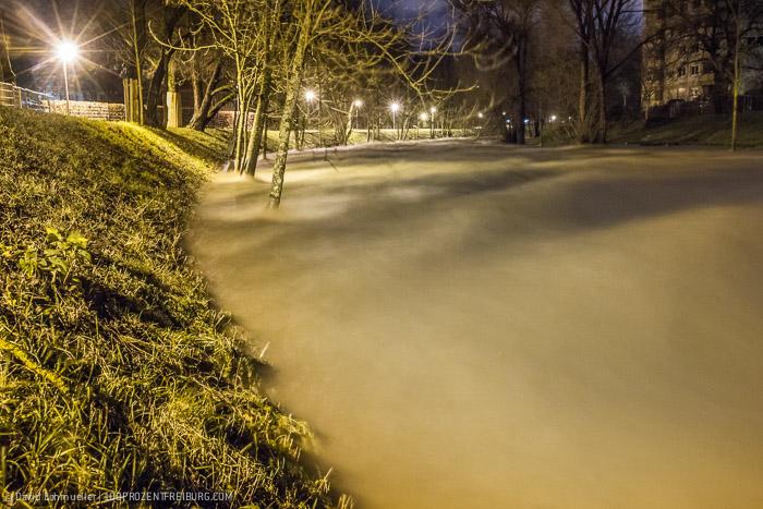 Freiburg Hochwasser (3)