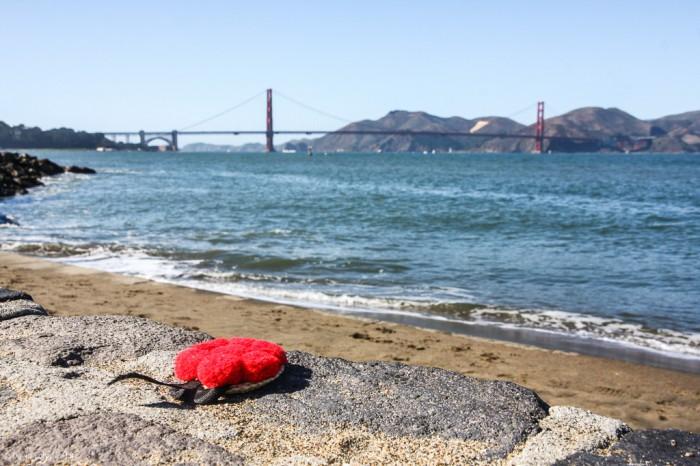 Ein Bollenhut auf Weltreise (3)