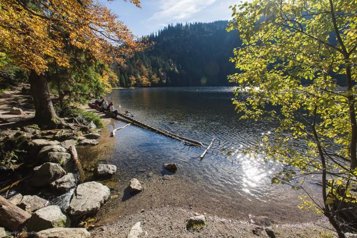 Schwarzwald (12)