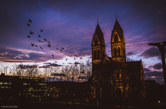 Freiburg Sonnenuntergang (21)