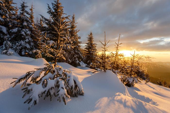 Nationalpark Schwarzwald Winter