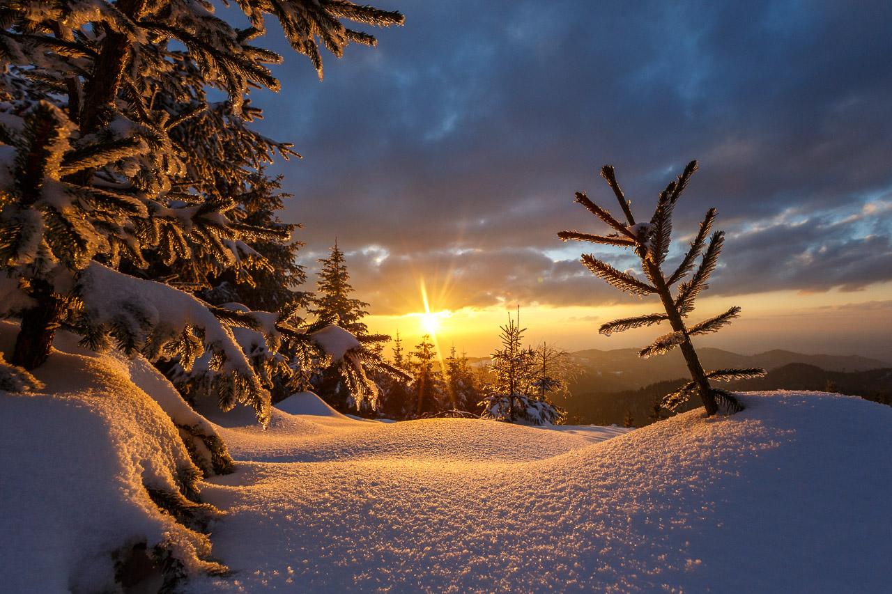 Abenteuer Schwarzwald | Winter