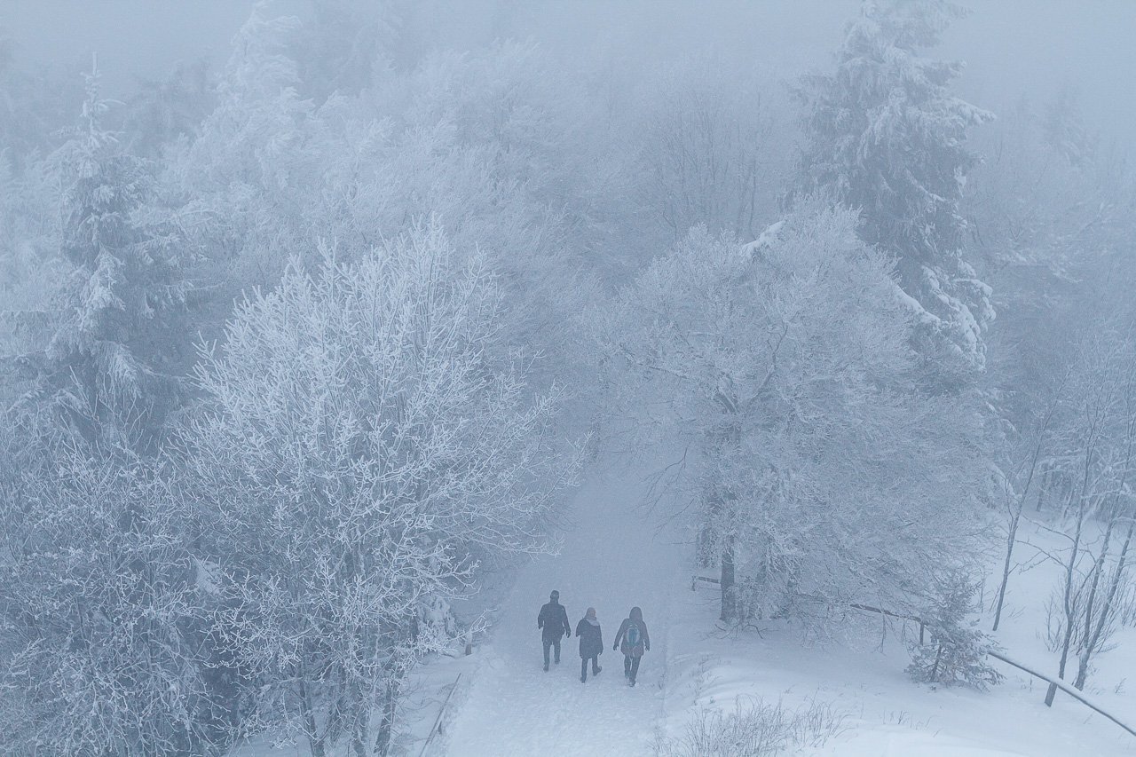 Winterwandern Schauinsland